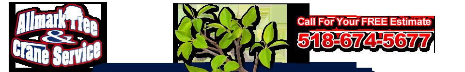 Allmark Tree