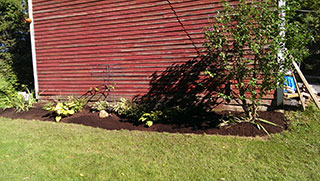 Gardening with red house