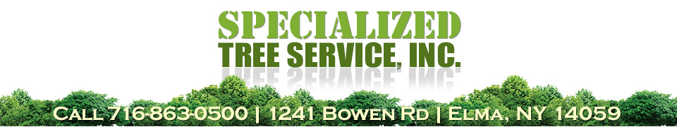 Specialized Tree Service Inc