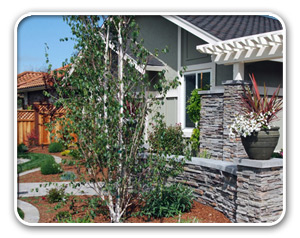 landscaping design san jose ca evergreen landscape concrete offers