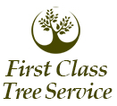 First Class Tree Service