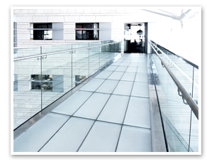 Plate Glass at Office