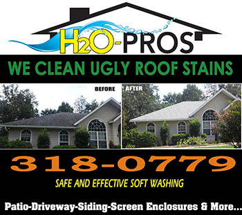 We Clean Ugly Roofs