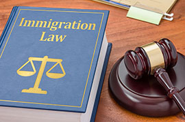 Immigration Law Book and Gavel