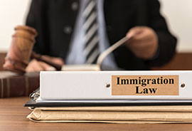 Immigration Lawywer