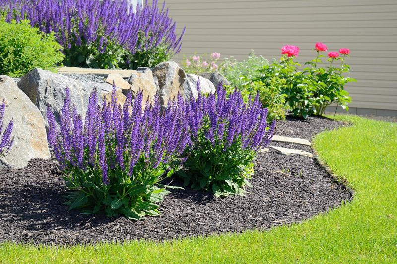 flower bed mulching