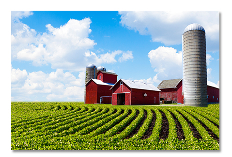 Farm Insurance Agency