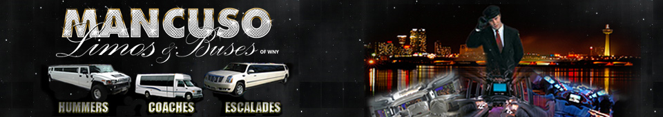 Limo and Party Bus Service Provider