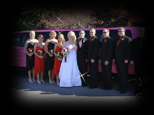 Wedding PArty In Front of Pink Limo
