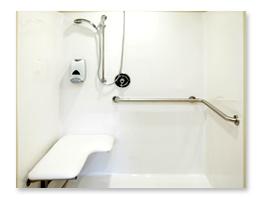 Walk In Bathtub and Shower