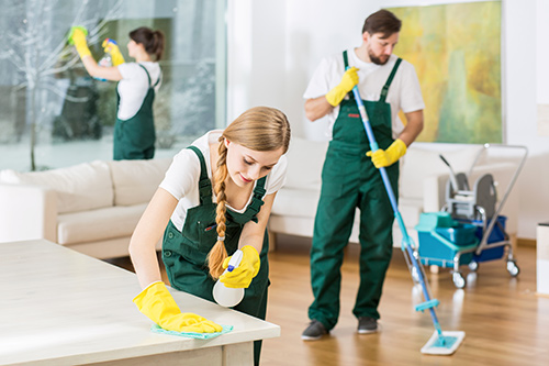 Maids Cleaning Living Room