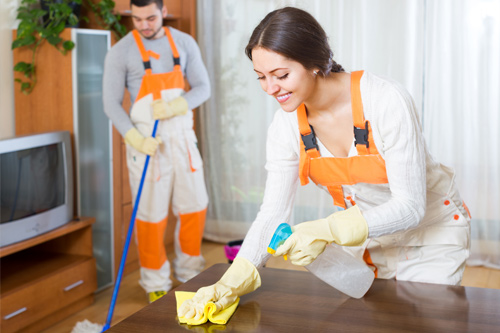Cleaners Dusting and Sweeping Home