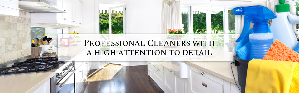 Clean Kitchen and Cleaning Supplies