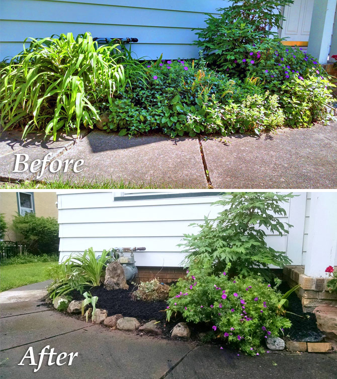 Before and After Planting Garden